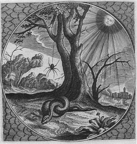 Jacob Cats Motivo de la serpiente y la araña Sinne en Minnebeelden 1627